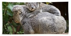 Koala Joey Piggy Back Beach Towel by Jamie Pham