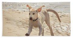 Labrador Jumping Beach Towel