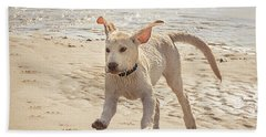 Labrador Jumping Beach Sheet