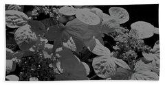 Lace Cap Hydrangea In Black And White Beach Towel