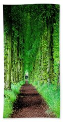 Lady Lucy's Walk Beach Towel by Wallaroo Images