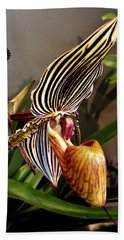 Lady Slipper Orchid Beach Sheet