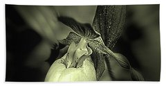 Lady Slipper Orchid Flower Beach Towel