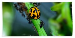 Ladybird And The Ants 2 By Kaye Menner Beach Towel