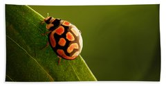 Ladybug  On Green Leaf Beach Towel by Johan Swanepoel