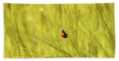 Ladybug In A Wheat Field Beach Towel