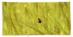 Ladybug In A Wheat Field Beach Sheet