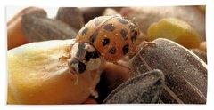 Ladybug On The Run Beach Sheet