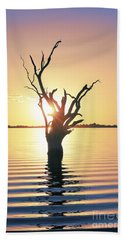 Beach Towel featuring the photograph Lake Bonney Sunset by Ray Warren