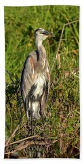 Beach Towel featuring the photograph Lake Bonny Visitor by Carol Bradley