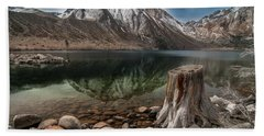 Lake Convict Tree Stump Beach Sheet by Ralph Vazquez