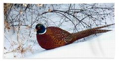 Beach Towel featuring the photograph Lake Country Pheasant by Will Borden