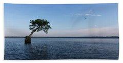 Lake Disston Cypress #2 Beach Sheet by Paul Rebmann