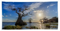 Lake Disston Cypress Paradise Beach Sheet