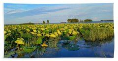 Pointe Mouilee Lake Erie Beach Towel