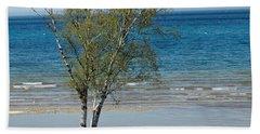 Beach Sheet featuring the photograph Lake Michigan Birch Tree Bench by LeeAnn McLaneGoetz McLaneGoetzStudioLLCcom