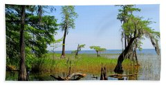 Lake Waccamaw Nc Beach Sheet