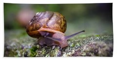 Land Snail II Beach Towel