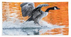 Landing Beach Towel by Parker Cunningham