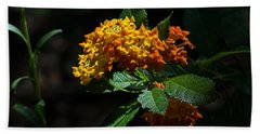 Lantana Flowers Beach Sheet by Kenneth Albin