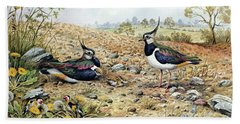 Lapwing Family With Goldfinches Beach Sheet by Carl Donner