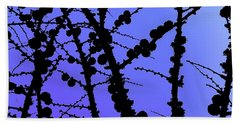 Larch Cones Against The Sky Beach Towel