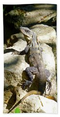 Beach Towel featuring the photograph Large Lizard M by Francesca Mackenney