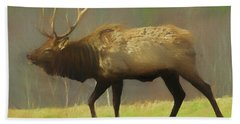 Large Pennsylvania Bull Elk. Beach Towel