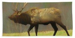 Large Pennsylvania Bull Elk. Beach Sheet