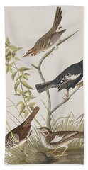 Lark Finch Prairie Finch Brown Song Sparrow Beach Towel by John James Audubon