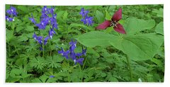 Larkspur And Red Trillium Beach Towel by Alan Lenk