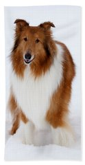 Lassie Enjoying The Snow Beach Towel by Shane Holsclaw