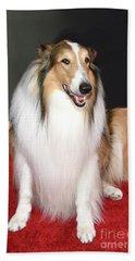 Lassie Beach Sheet