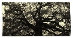 Last Angel Oak 72 Beach Sheet