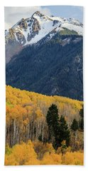 Beach Towel featuring the photograph Last Light Of Autumn Vertical by David Chandler