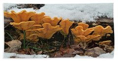 Last Mushrooms Of The Seasons Beach Sheet by Michael Peychich