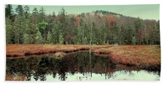 Beach Towel featuring the photograph Last Of Autumn On Fly Pond by David Patterson