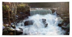 Beach Towel featuring the photograph Late Afternoon At The Duck Pond by Sue Collura