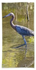 Beach Towel featuring the photograph Late Afternoon Fishing Expedition  by Carol Bradley