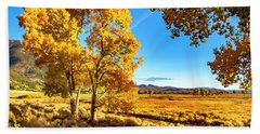 Beach Towel featuring the photograph Late Autumn In The Carson Valley by Nancy Marie Ricketts
