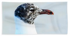 Laughing Gull Profile Beach Towel