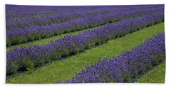 Lavendar Rows Beach Towel
