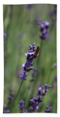 Lavender And Honey Bee Beach Towel