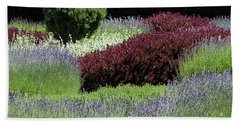 Lavender And Shrub Garden Beach Towel