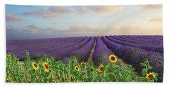 Lavender And Sunflower Flowers Field Beach Towel by Anastasy Yarmolovich