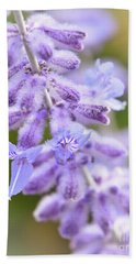 Beach Sheet featuring the photograph Lavender Blooms by Kerri Farley