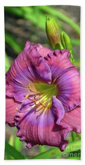 Beach Sheet featuring the digital art Lavender Blue Baby Daylily by Eva Kaufman