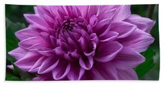 Lavender Dahlia Beach Sheet
