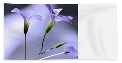 Lavender Flowers Beach Sheet by Kathy Eickenberg