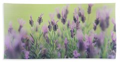 Beach Towel featuring the photograph Lavender by Keith Hawley